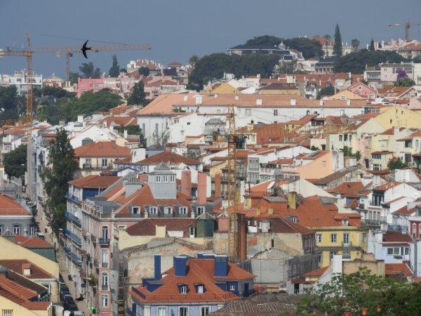 Portugal _ les toits de Lisbonne