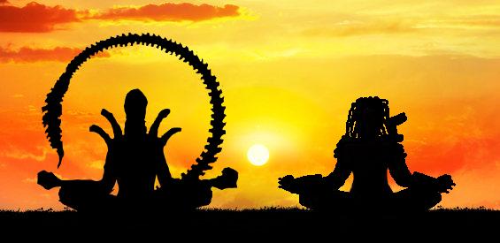 Alien zen Predator