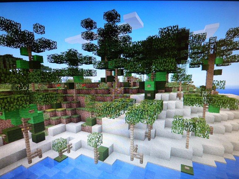 Mes Arbres Minecraft