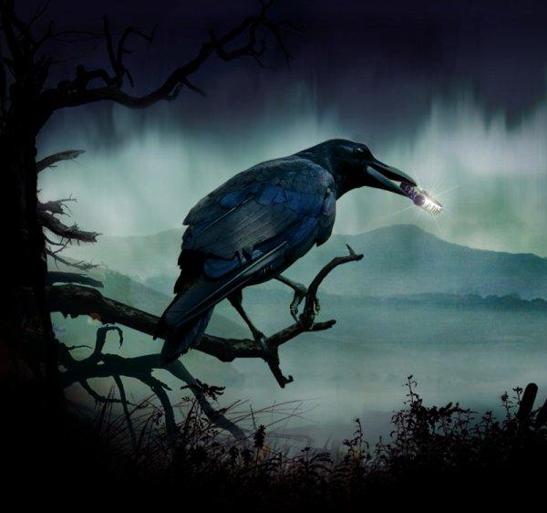 ... Les noirs corbeaux ...