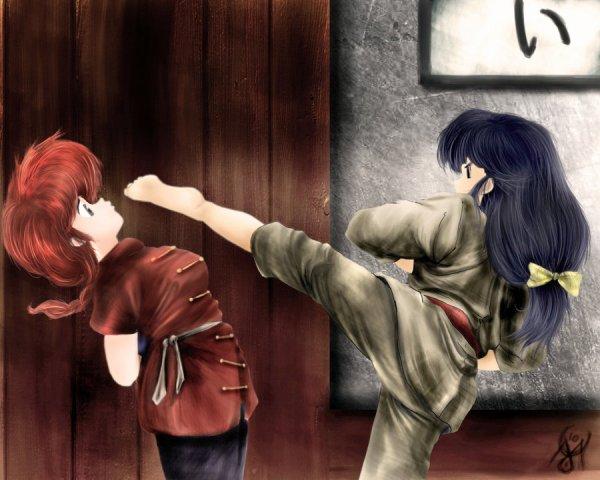 Ranma.½ > Ranma & Akane <