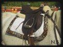 Photo de matos-equitation13