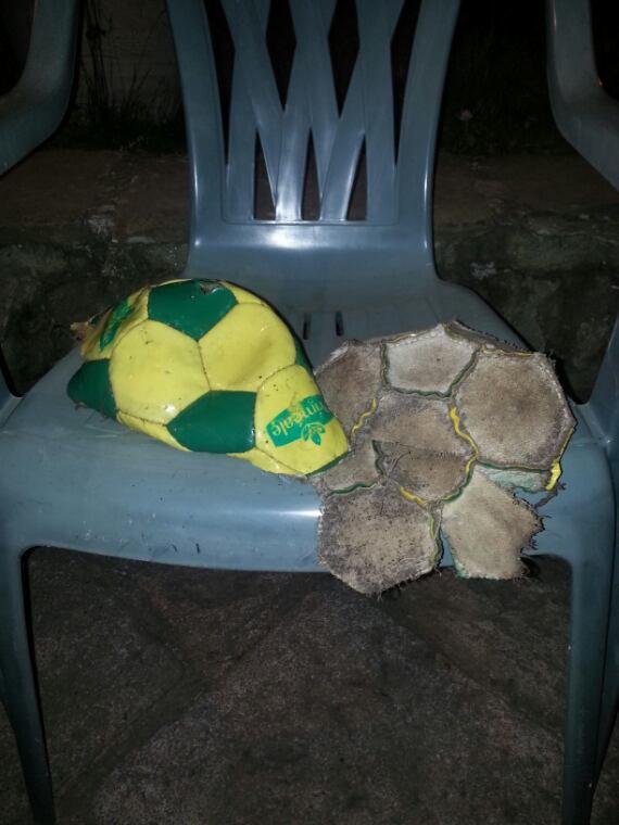 Mon gros déteste le Brésil