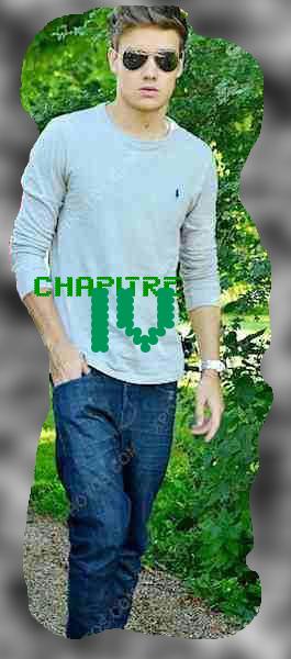 """Chapite 4 : """"Je défends toujours ceux que j'aime, même si je suis aussi effrayant qu'un bébé pingouin."""" - Niall Horan."""