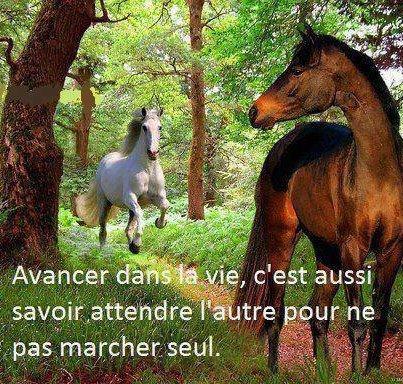 ATTENDRE....