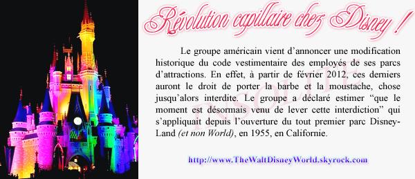 News : Révolution capillaire chez Disney !
