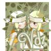 Vdz-team