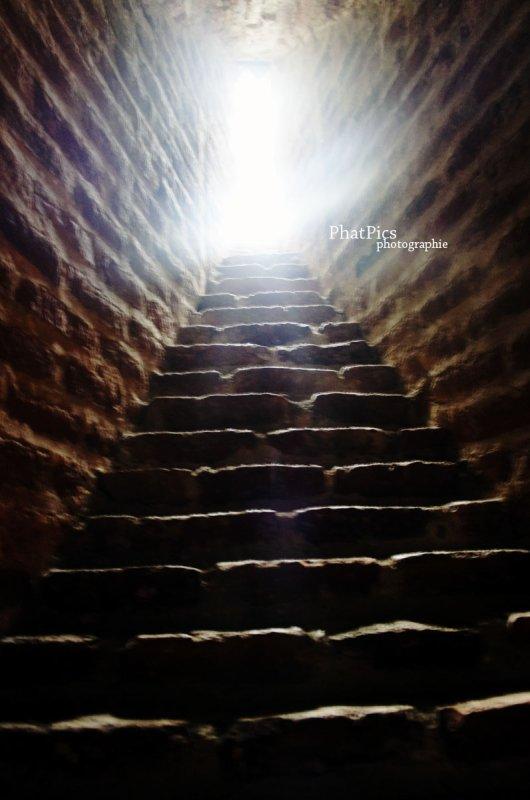 THE light ? ...