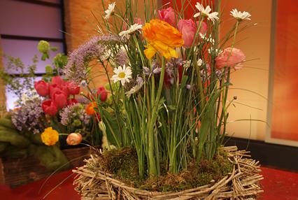 Gras-Blumen-Gesteck - ARD-Buffet :: Die gute Idee | SWR.de
