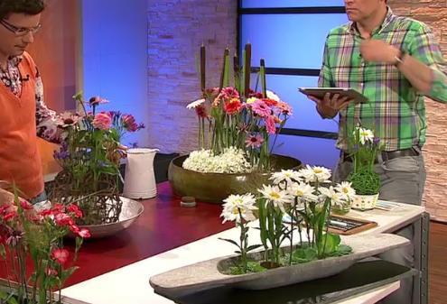 Tischdekoration mit schwebenden Sommerblüten in flachen Gefäßen - ARD-Buffet :: Die gute Idee | SWR.de