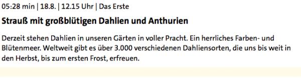 Strauß mit großblütigen Dahlien und Anthurien - ARD-Buffet :: Kreativ