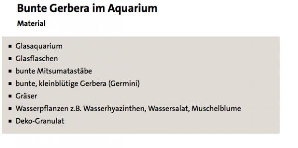 Bunte Gerbera im Aquarium - ARD-Buffet :: Kreativ