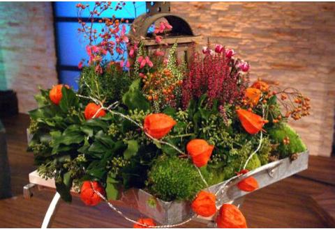 Indian Summer auf dem Gartentisch - ARD-Buffet :: Kreativ
