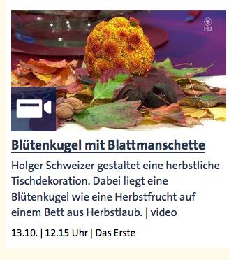 Blütenkugel mit Blattmanschette - ARD-Buffet :: Kreativ