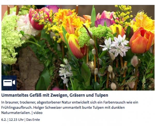 Ummanteltes Gefäß mit Zweigen, Gräsern und Tulpen - ARD-Buffet :: Kreativ