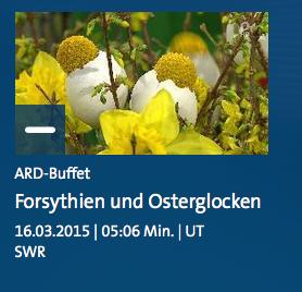"""Video """"Forsythien und Osterglocken"""" - ARD-Buffet"""