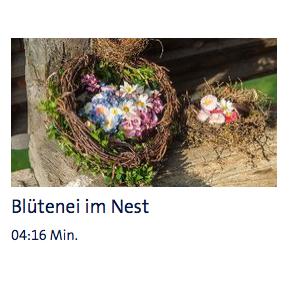 """Video """"Blütenei im Nest"""" - ARD-Buffet"""