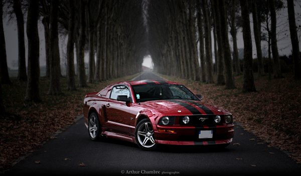 Meeting Ford Mustang