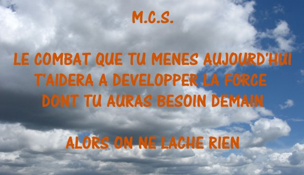 M.C.S. ON  NE  LACHE  RIEN !