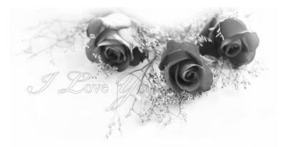 mariage d'amélie et senna ♥