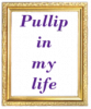 Pullip-in-my-life