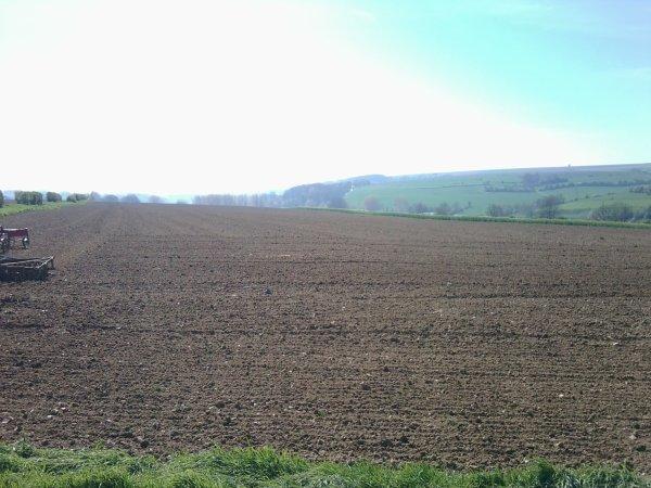 Le champs travailler entièrement