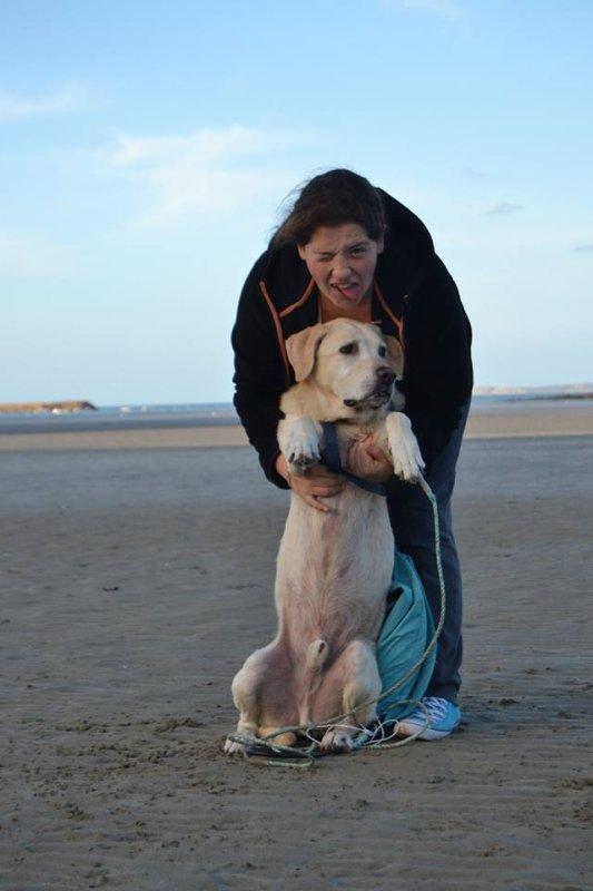 « L'âme d'un homme peut être jugé par la façon dont il traite son chien. »