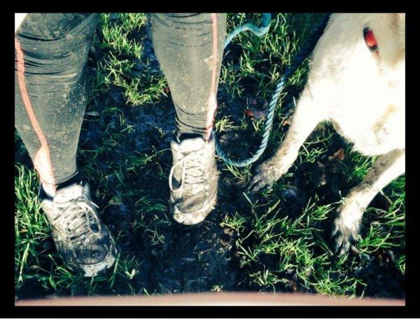 «Le cani-cross est un sport de partenaire, même dans la bouillasse! »