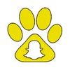 «La technologie évoluée nous mettra enfin à égalité avec notre chien. » Nos réseaux sociaux.