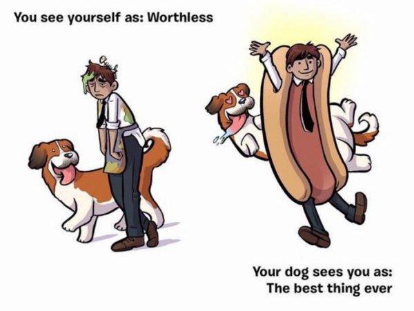 Comment votre chien vous voit ?