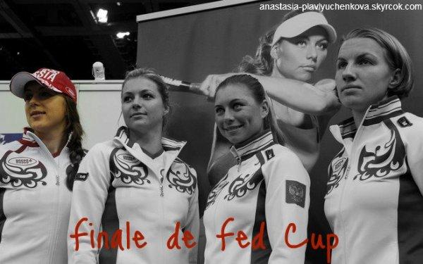 Finale de Fed Cup   Russie - République Tchèque