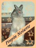 Photo de Pinpin-Noisette