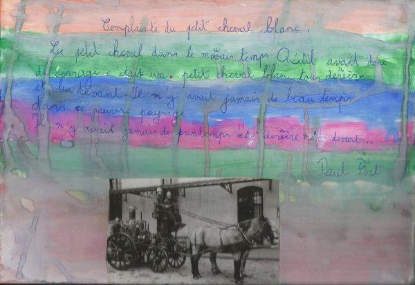 Arthur SMET (8 ans) Projet : Le cheval