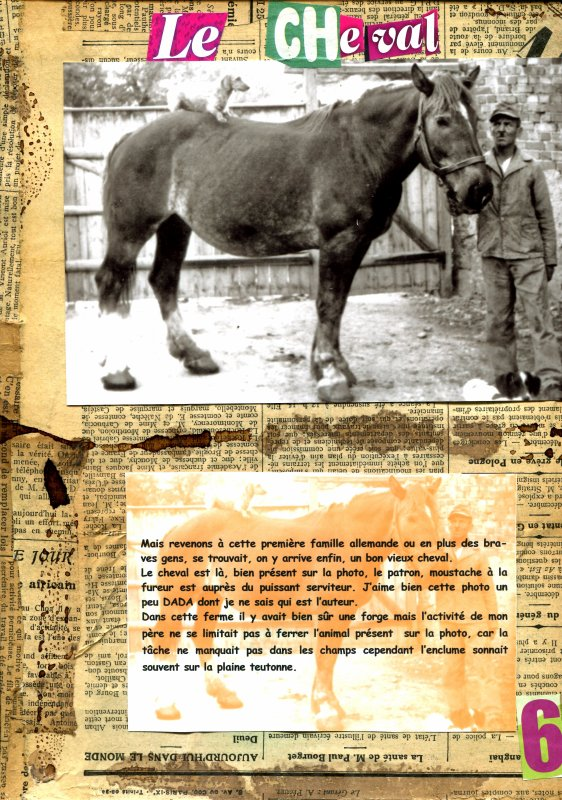 Christian ALLE . Projet : le cheval ... (Extraits)
