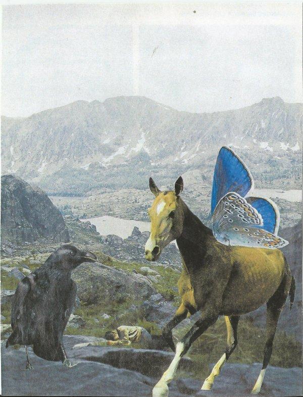 Bruno SOURDIN (Projet : Le cheval.)