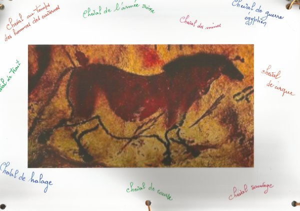 Brigitte ALLE (Projet : le cheval)