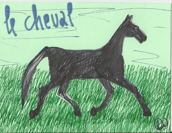 Dédé Wolter (projet : Le cheval)