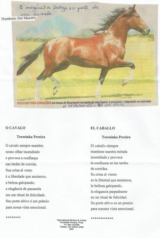 Teresinka PEREIRA (projet : le cheval)