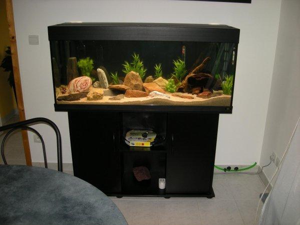 mon blog sur l'aquariophilie