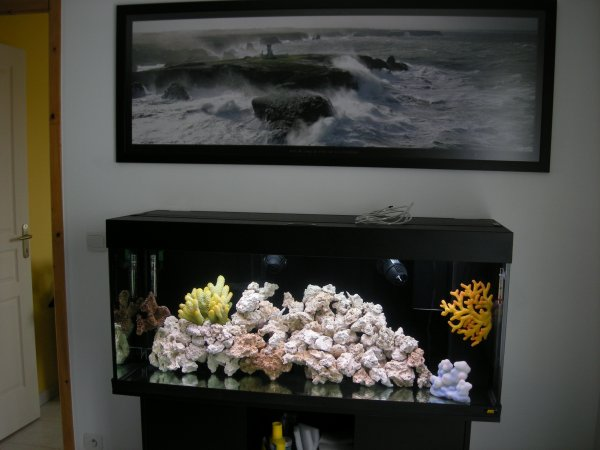 le même bac en eau de mer