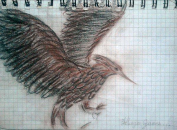Le dessin....