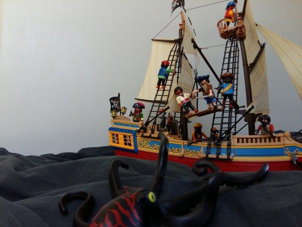 Les pirates n'ont peur de rien..