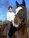 Photo de passion-chevaux-d3