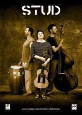 Vendredi 11 février 20H30 à la Halle, STUD en Duo, Chant, Guitare et Contre-Basse
