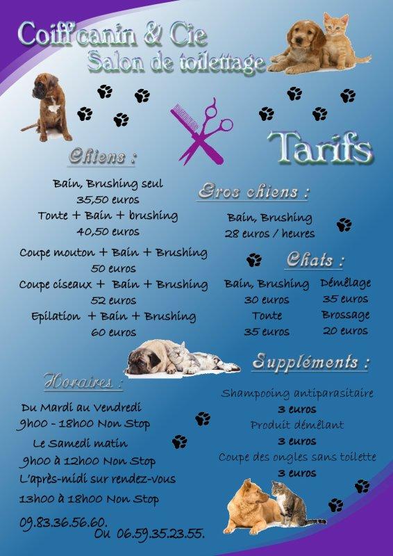 Affiche a3 prix salon de toilettage d couvrez - Jeux de salon de toilettage pour animaux gratuit ...