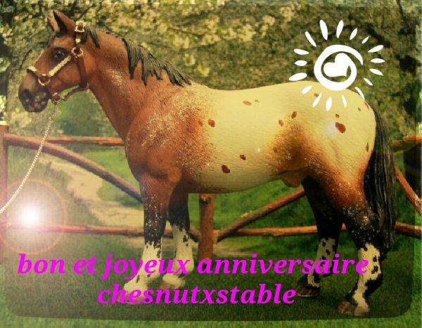 bon et joyeux anniversaire ChesnutxStable !!!!!