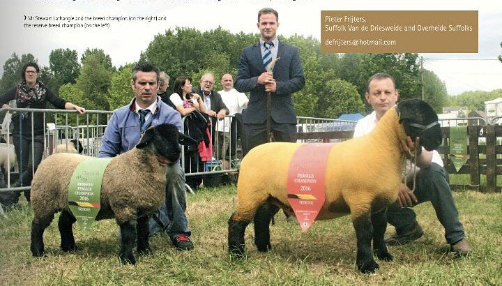 Championne reserve National Show Herne 2016