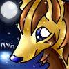 Fiche Shiny ~ N°007 : Medhyena - Grahyena