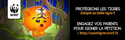 Les tigres: en danger d'extinction...