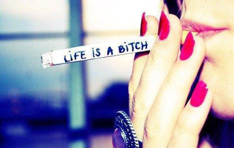 MAIS la vie continue...